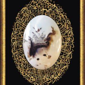 Profile picture of Riffat Saeed Pasha